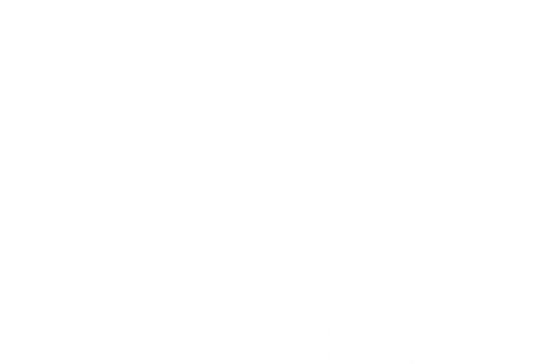 SAFARIVELUTION